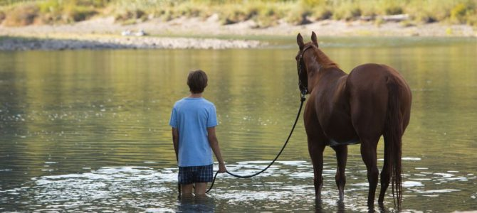 boom reviews lean on pete