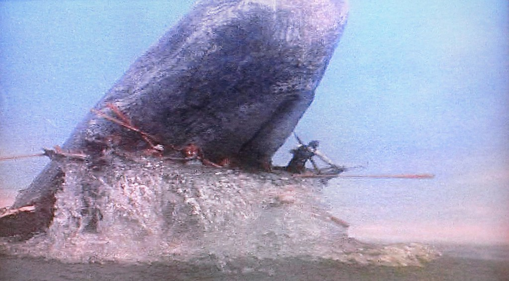 boom reviews Moby Dick